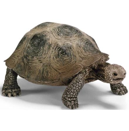 Schleich - Jättesköldpadda
